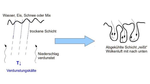 Schematische Darstellung.
