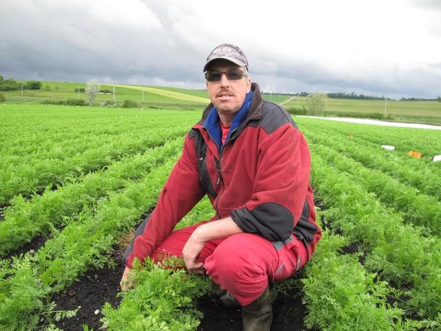 Der Bauer kniet im Rüben-Feld. Er trägt eine roten Faser-Pulli und trägt eine Baseball-Mütze.
