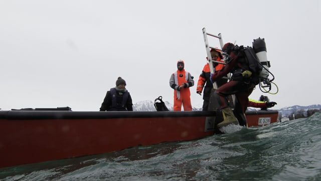 Taucher steigt von einem Boot ins Wasser