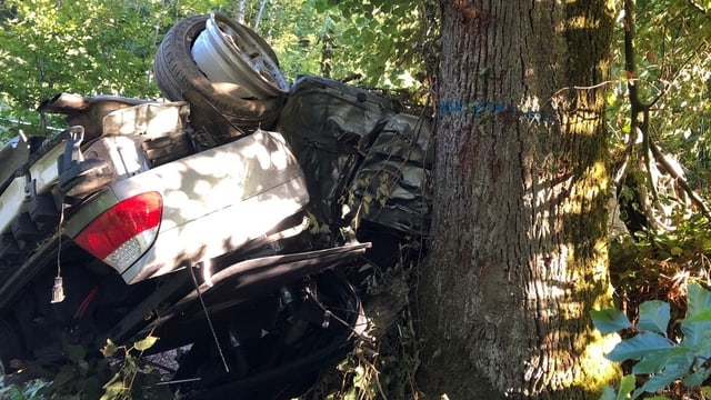 Schwer beschädigtes Auto liegt auf dem Dach zwischen Bäumen.