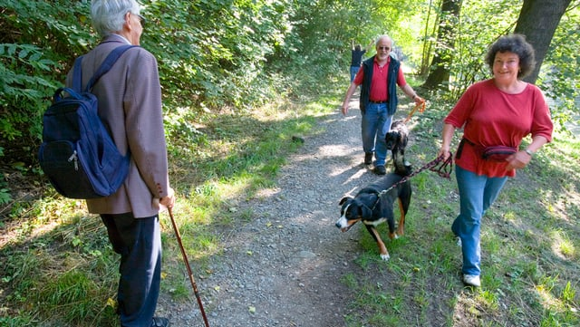 Eine Hundesitterin spaziert mit einem Hund an der Leine durch den Wald.