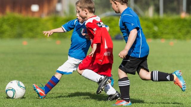 Kleine Kinder spielen Fussball
