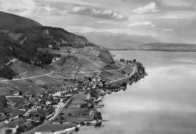 Luftaufnahme von Twann, 1950