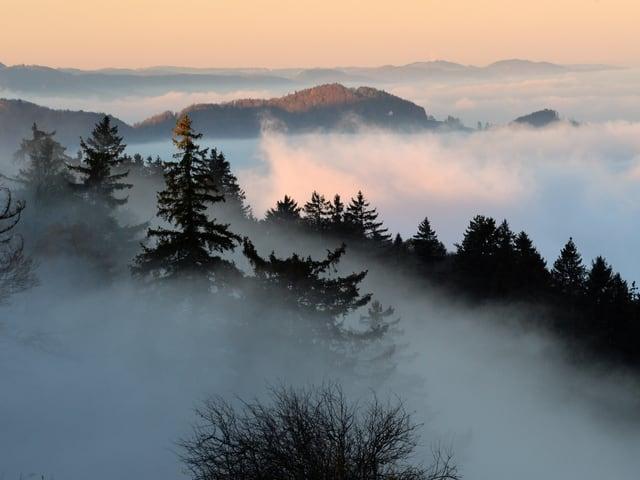 Hügel mit Nebel in den Tälern, oben klarer Himmel.