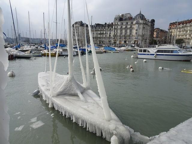 Eisbildung im Genfer Hafen.