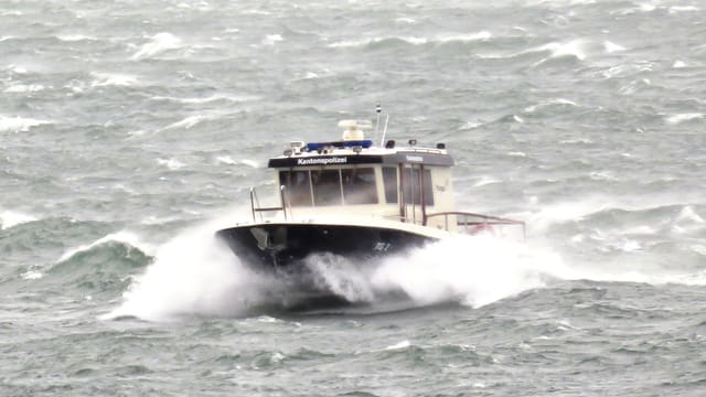Schiff der Seepolizei auf dem See