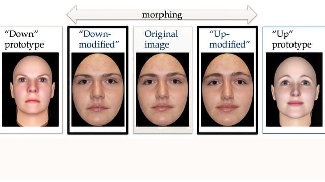 """Die Versuchsteilnehmer bekamen entweder ein sympathischeres (""""up-modified"""") oder weniger sympathisches (""""down-modified"""") Gesicht als Tauschpartner vorgesetzt (schwarz umrandet)."""