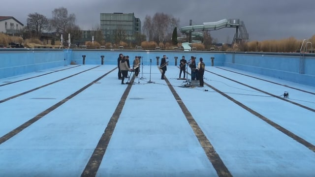 Panda Lux im Pool
