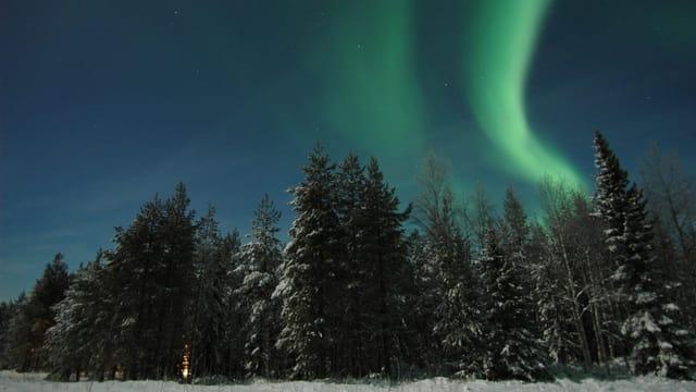 Grünlich bis lila Polarlicht über Lappland.
