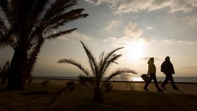 Zwei Personen spazieren an einem Strand mit Palmen.