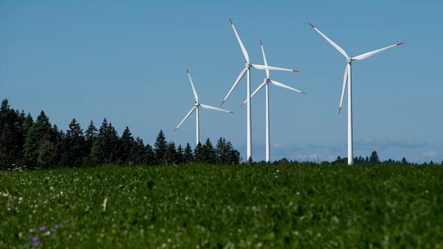 Grösster Windpark auf dem Col du Mont-Crosin im Juragebirge.