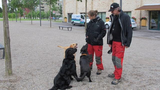 Drei Hunde sitzen vor einem Mann und einem Frau mit roten Hosen und schwarzer Jacke.