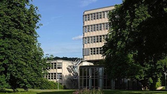 Gymnasium Münchenstein hinter Bäumen