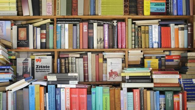 Prall gefülltes Bücherregal, davor stapeln sich weitere Bücher