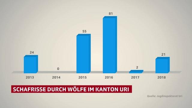 Grafik, welche die Zahl der Wolfsrisse im Kanton Uri zeigt.