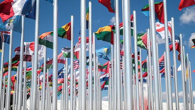 Las bandieras da las naziuns commembras da l'ONU, qua a Marrakesch nua che la conferenza dal clima ha gì lieu.