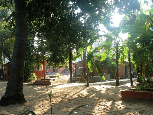 Hütten zwischen tropischen Bäumen.