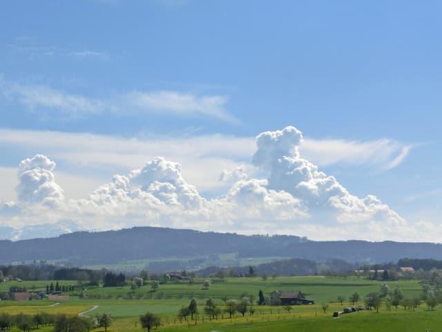 Grüne Wiesen, Wäler. Im Hintergrund grosse Blumenkohlwolken am blauen Himmel.