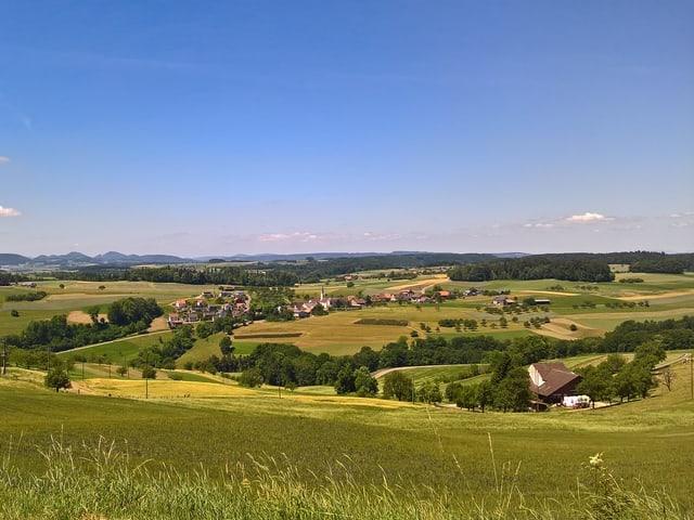 Landschaft mit teils gelbbraun verfärbten Grass und blauem Himmel im Oberbaselbiet.