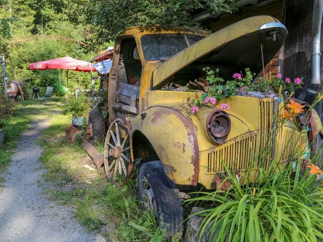 Ord l'auto creschan geranis.