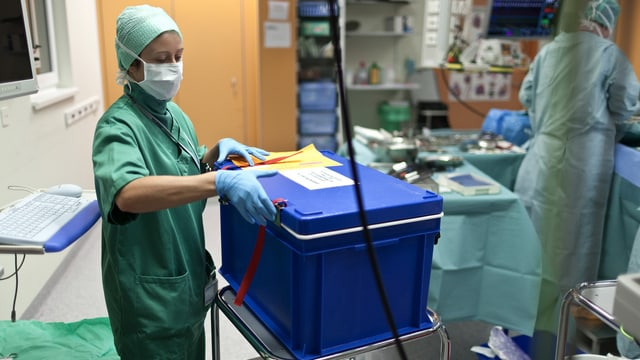 Kühlbox für Organspende