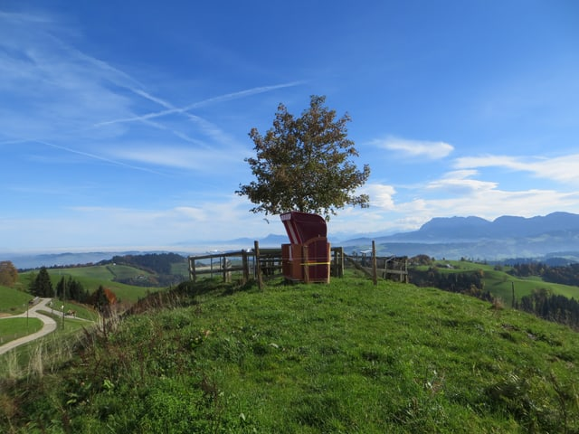 Strankorb an schöner Schweizer Aussicht.