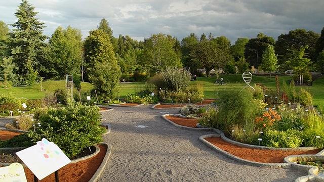 Video «Magische Gärten – Schweden: Gärten von Linné» abspielen