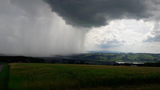 Schauerzelle mit Regenvorhang bei Hochdorf.