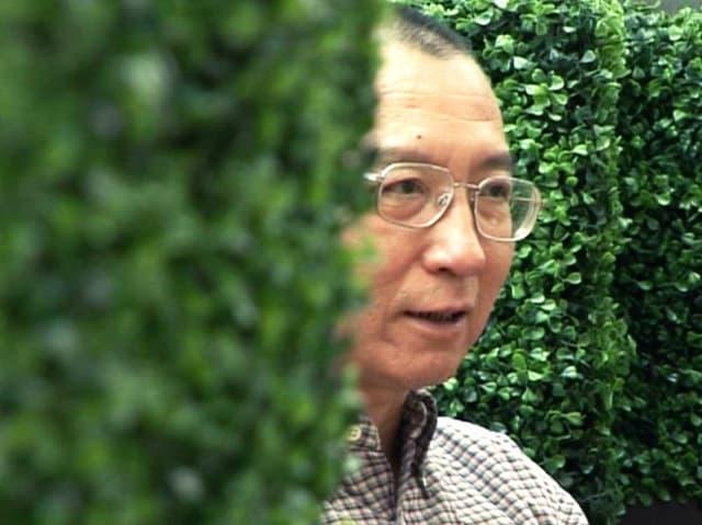 Bürgerrechtler und Friedensnobelpreisträger Liu Xiaobo.