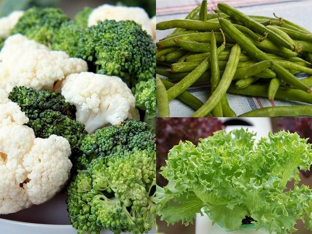 Blumenkohl, Broccoli, Bohnen, Batavia