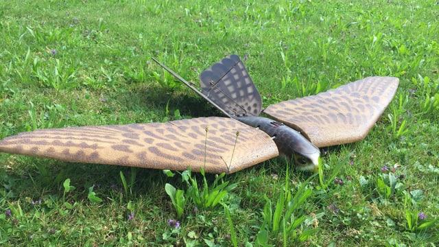 Vogel-Drohne am Boden.