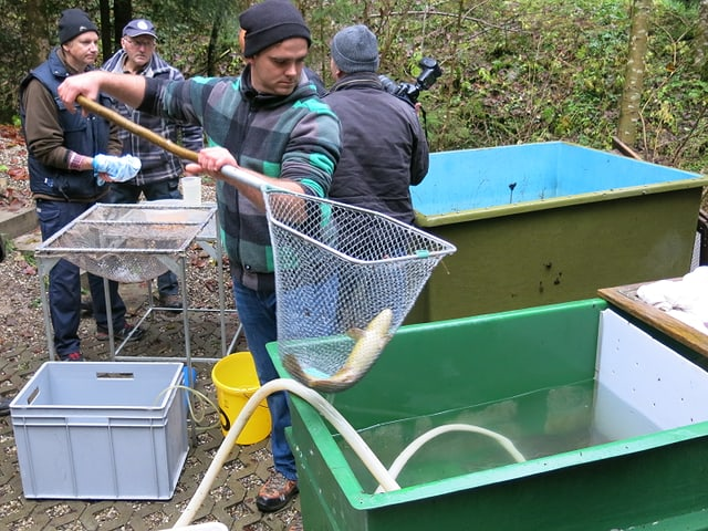 Mehrere Männer am Fischen.