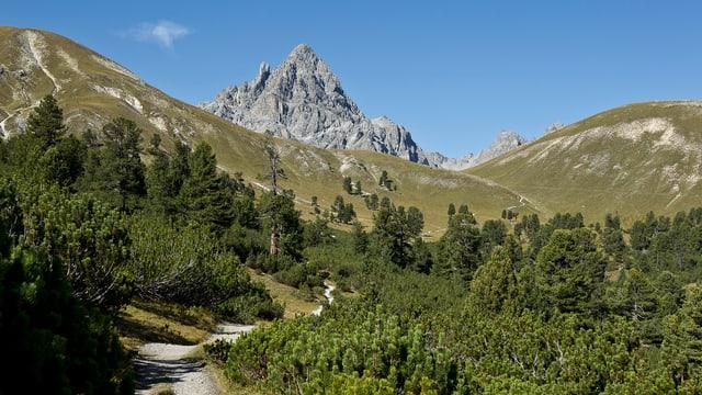 Natira intacta sco en Val Mingèr tira er la stad blers turists en il Grischun.