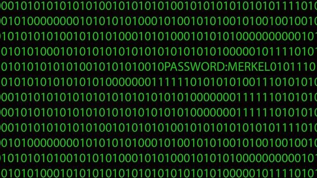 Eine digitale Zahlenreihe aus Einsen und Nullen, dazwischen steht «Passwort Merkel»