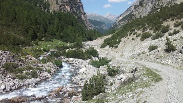Fluss und Kiesstrasse in Tal