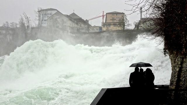 Blick von einer nahen Kanzel auf den tosenden Rheinfall.