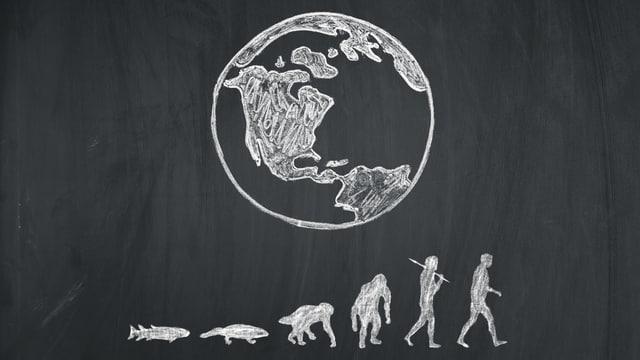 Skizze der Erdkugel mit der Entwicklung des Menschen bis zum aufrechten Gang darunter.