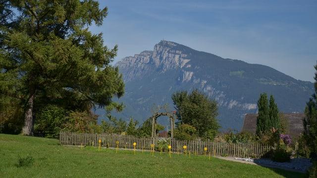 Blick auf das Niederhorn