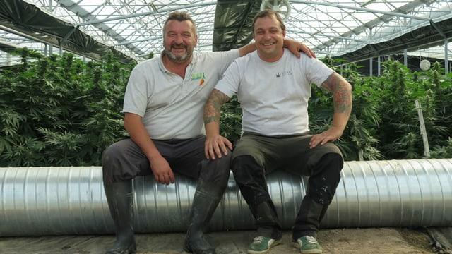 Die beiden Hanfbauern.