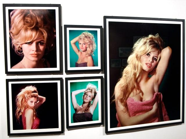 Eine Auswahl von Portrait-Bildern mit Brigitte Bardot, die 2009 im Rahmen einer Ausstellung gezeigt wurden.