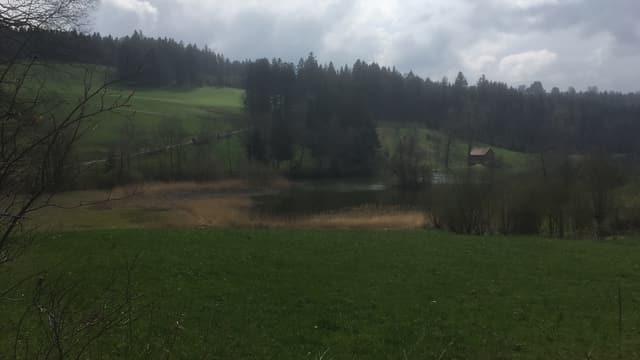 Wenigerweier zwischen St.Gallen und Appenzell Ausserrhoden