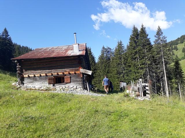 Eine Hütte auf einer grünen Wiese.