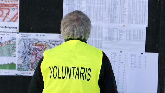 Voluntari.