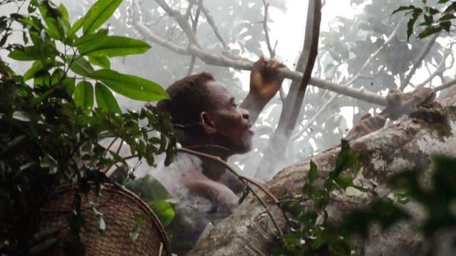 Ein schwarzer Mann blickt mitten im Urwald gegen den Himmel.