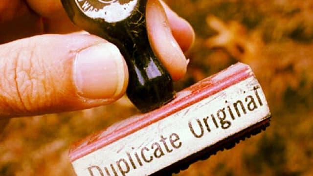 Hand hält Stempel mit Aufschrift Duplicate Original.