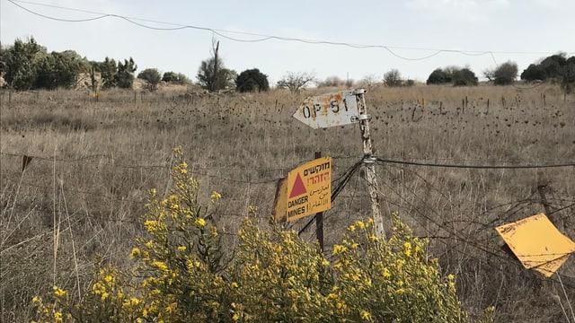 Verdorrte Wiese, darauf gelbe Schilder mit Warnungen.