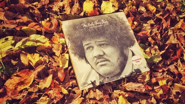 Baby Huey Platte auf Herbstlaub