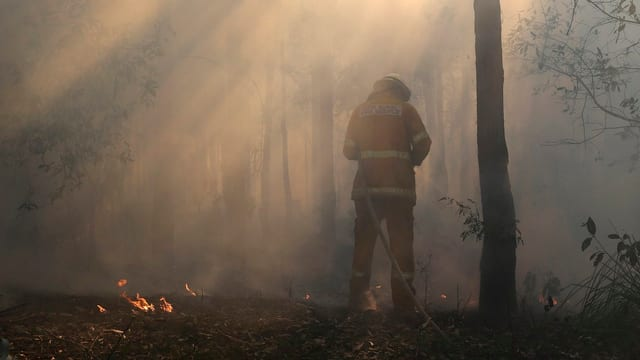 Buschbrände in Australien. Ein Feuerwehrmann im Vordergrund.