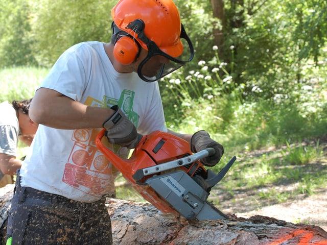 Mann mit Motorsäge und Holzfällerhelm zerteilt einen Baumstamm.