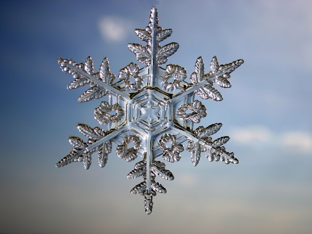Durchsichtiger Schneestern mit sechs fein gegliederten Armen.